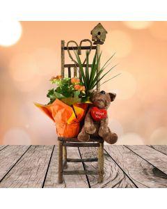 The Gardener's Chair