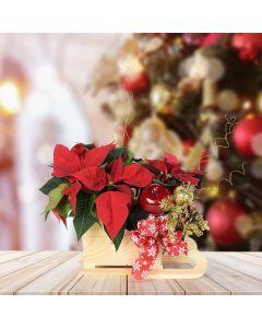 Festive Poinsettia Sleigh, floral gift baskets, plant gift baskets